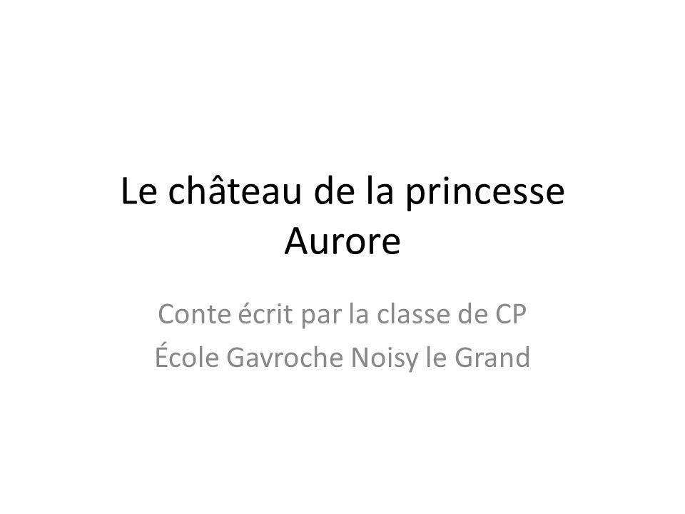 Le château de la princesse Aurore