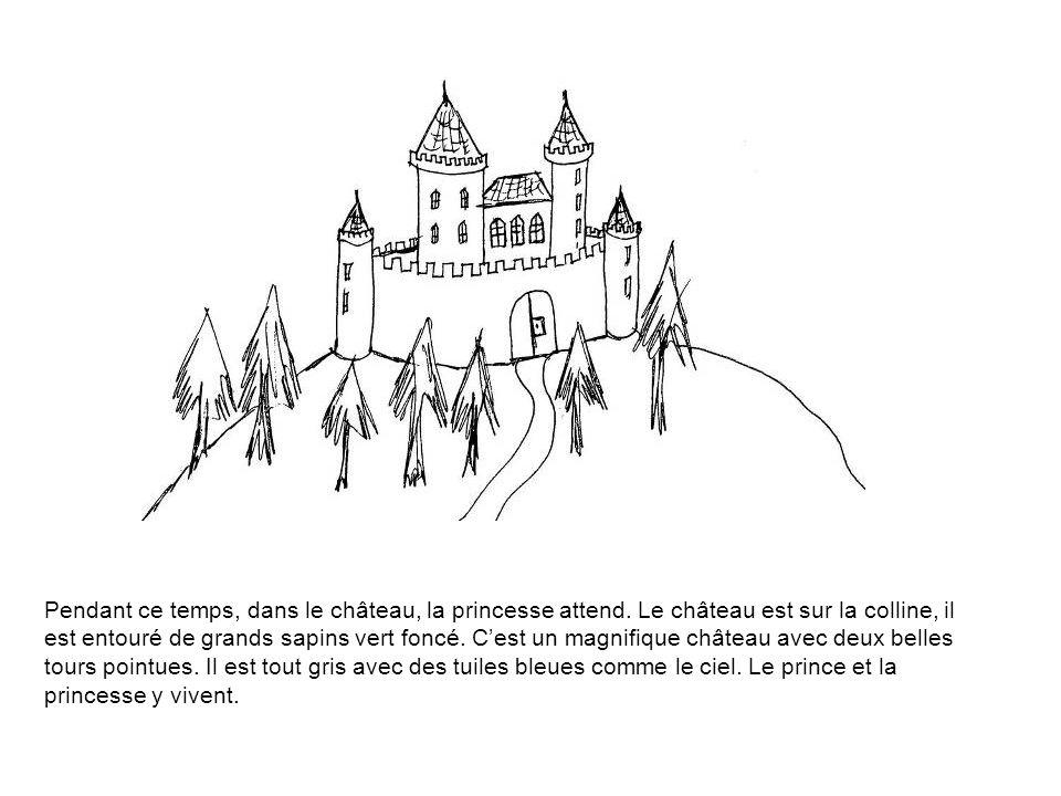 Pendant ce temps, dans le château, la princesse attend
