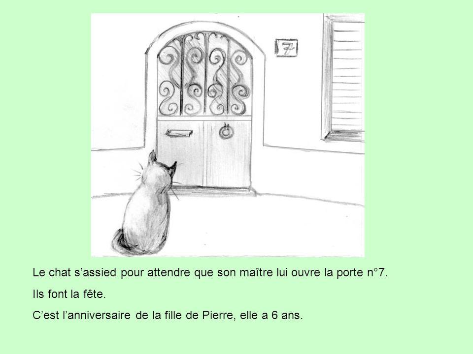 Le chat s'assied pour attendre que son maître lui ouvre la porte n°7.