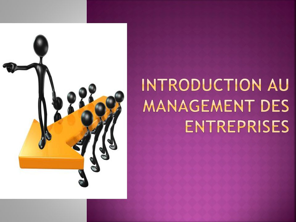 Introduction au management des entreprises