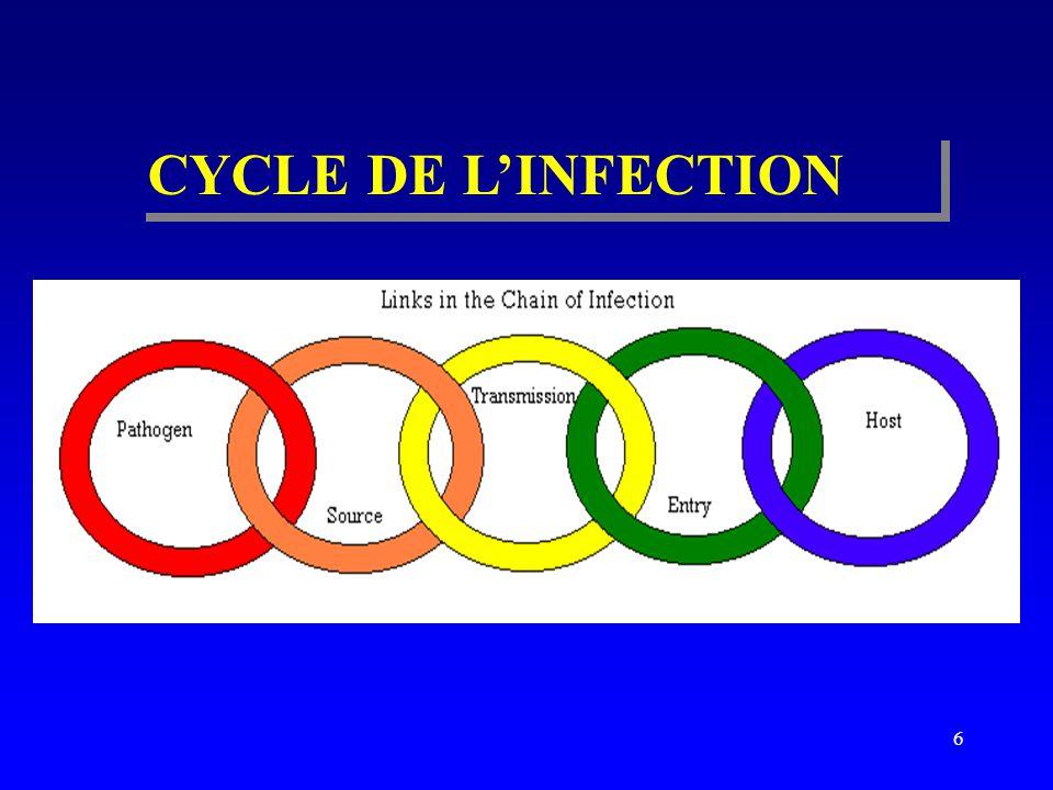CYCLE DE L'INFECTION