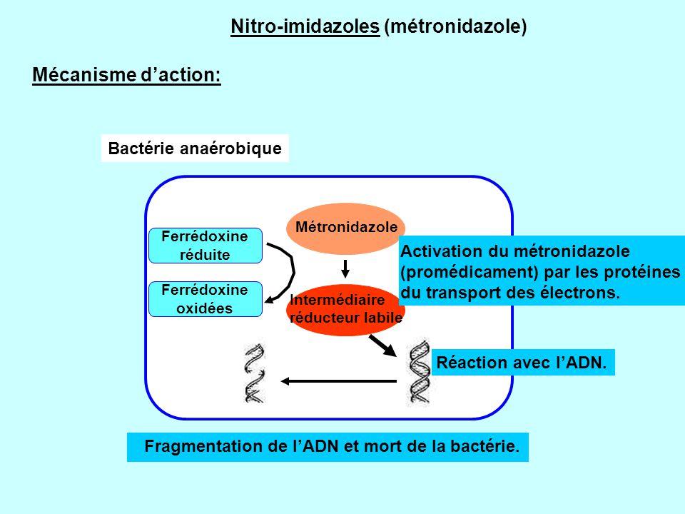 Nitro-imidazoles (métronidazole)