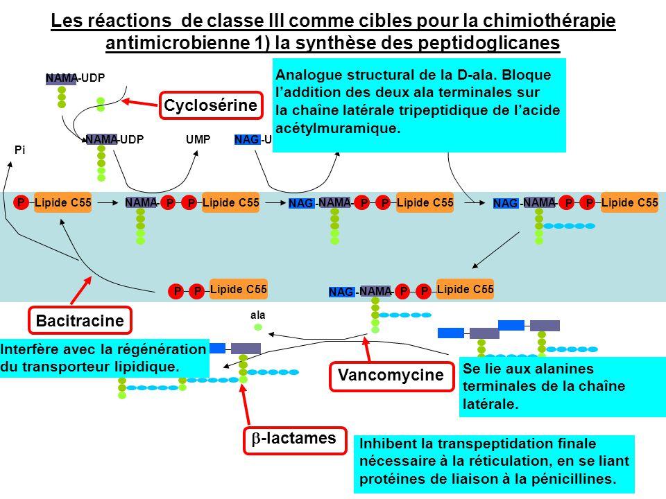 Les réactions de classe III comme cibles pour la chimiothérapie