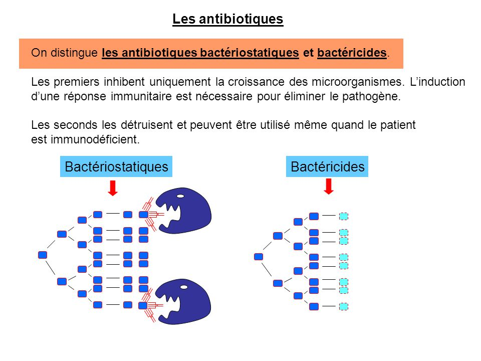 Les antibiotiques Bactériostatiques Bactéricides