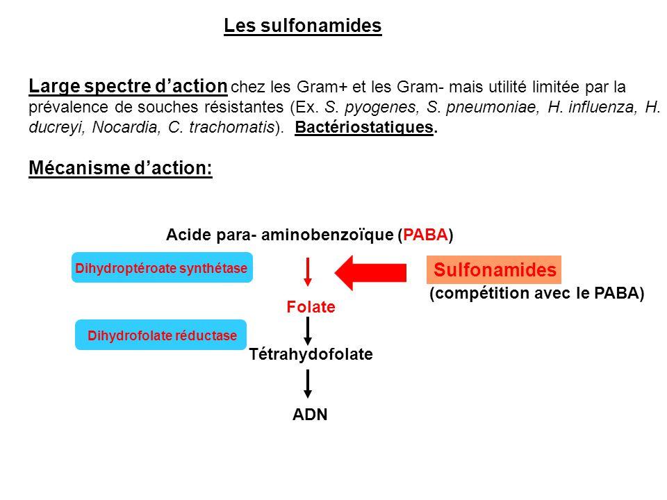 Acide para- aminobenzoïque (PABA)