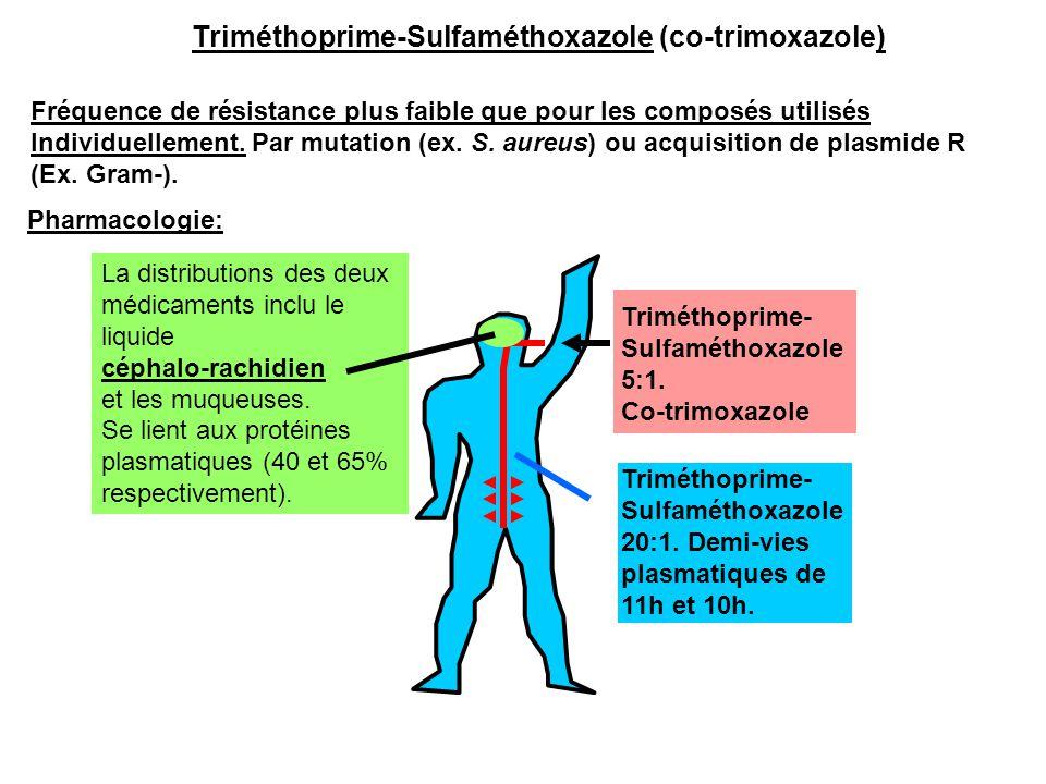Triméthoprime-Sulfaméthoxazole (co-trimoxazole)