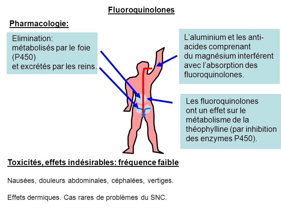métabolisés par le foie (P450) et excrétés par les reins.