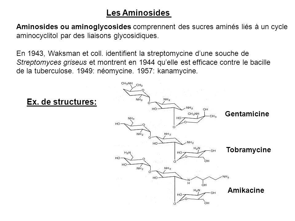 Les Aminosides Ex. de structures: