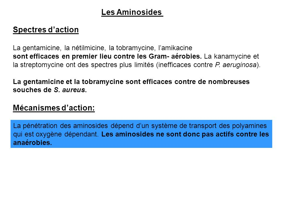 Les Aminosides Spectres d'action Mécanismes d'action: