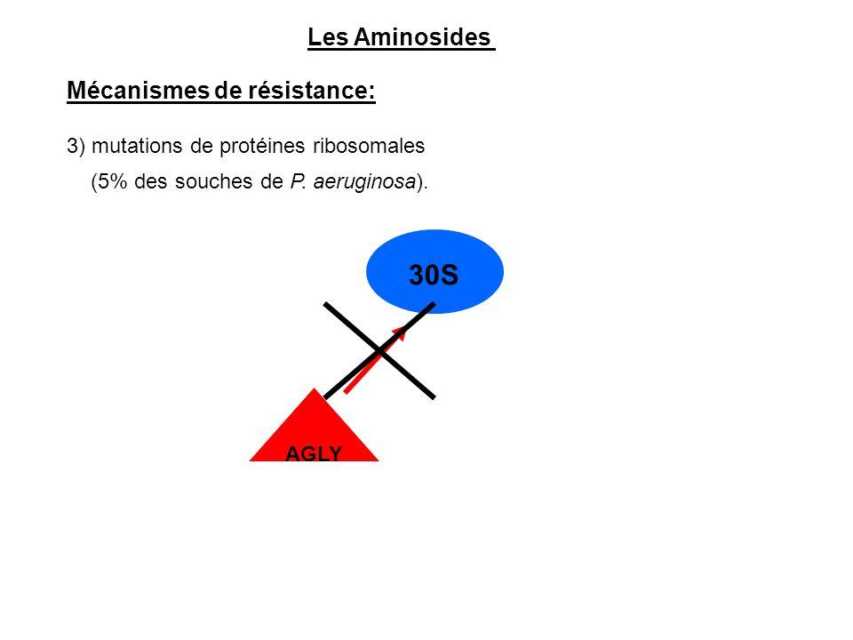 30S Les Aminosides Mécanismes de résistance:
