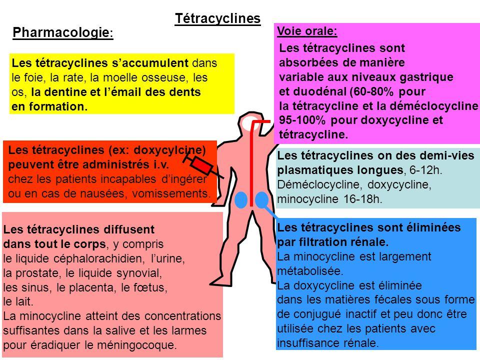 Tétracyclines Pharmacologie: Voie orale: Les tétracyclines sont