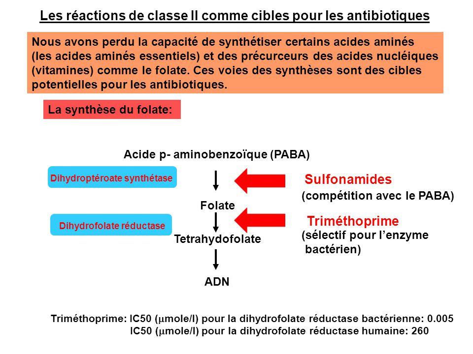 Les réactions de classe II comme cibles pour les antibiotiques