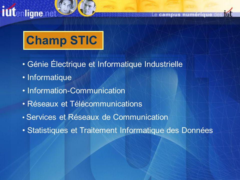 Champ STIC Génie Électrique et Informatique Industrielle Informatique