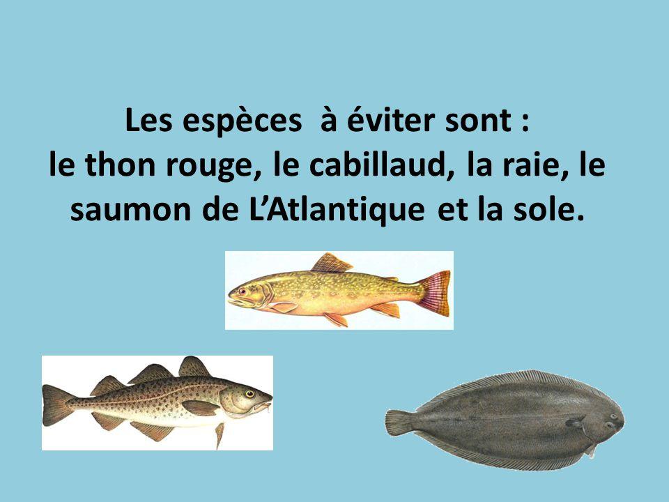 Les espèces à éviter sont : le thon rouge, le cabillaud, la raie, le saumon de L'Atlantique et la sole.
