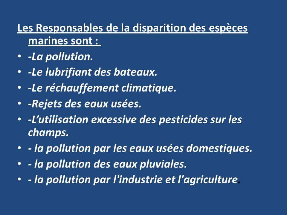 Les Responsables de la disparition des espèces marines sont :