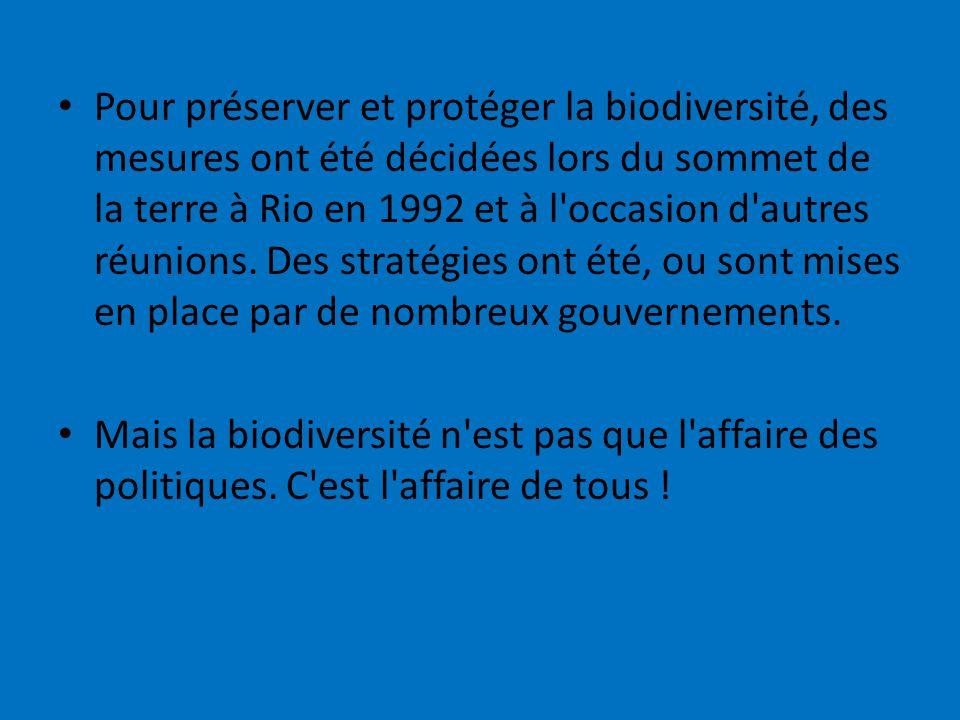 Pour préserver et protéger la biodiversité, des mesures ont été décidées lors du sommet de la terre à Rio en 1992 et à l occasion d autres réunions. Des stratégies ont été, ou sont mises en place par de nombreux gouvernements.