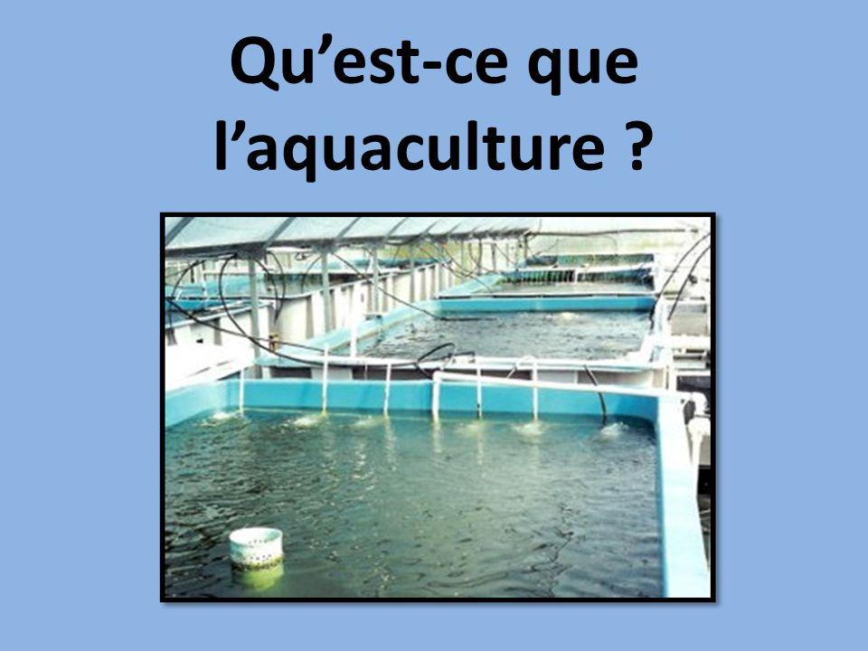 Qu'est-ce que l'aquaculture