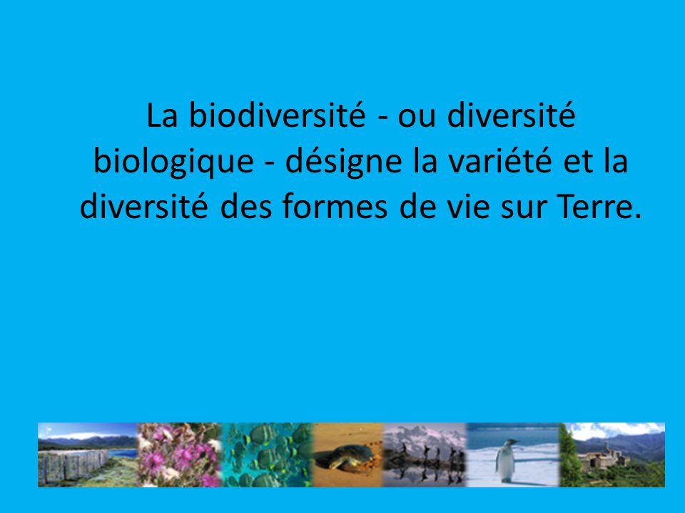 La biodiversité - ou diversité biologique - désigne la variété et la diversité des formes de vie sur Terre.