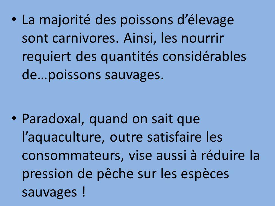 La majorité des poissons d'élevage sont carnivores