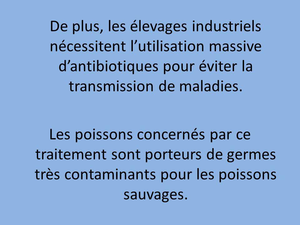 De plus, les élevages industriels nécessitent l'utilisation massive d'antibiotiques pour éviter la transmission de maladies.