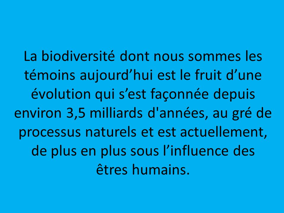 La biodiversité dont nous sommes les témoins aujourd'hui est le fruit d'une évolution qui s'est façonnée depuis environ 3,5 milliards d années, au gré de processus naturels et est actuellement, de plus en plus sous l'influence des êtres humains.