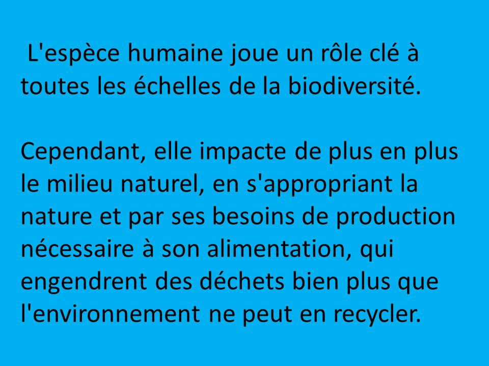 L espèce humaine joue un rôle clé à toutes les échelles de la biodiversité.