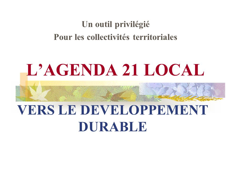 VERS LE DEVELOPPEMENT DURABLE
