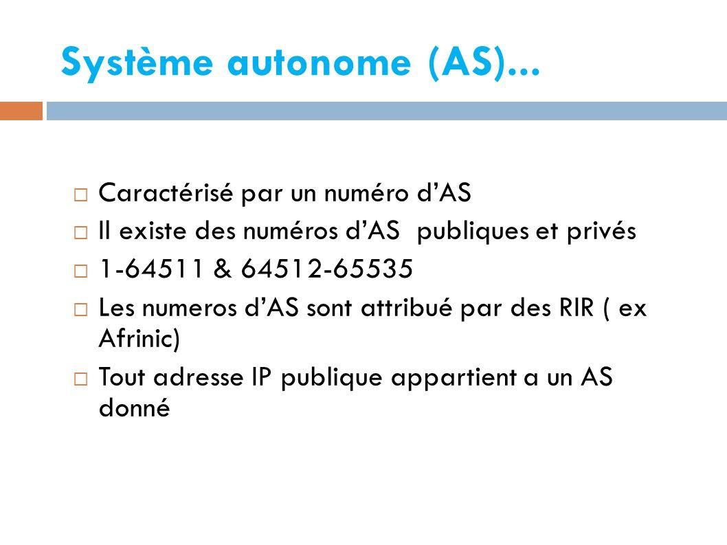 Système autonome (AS)... Caractérisé par un numéro d'AS