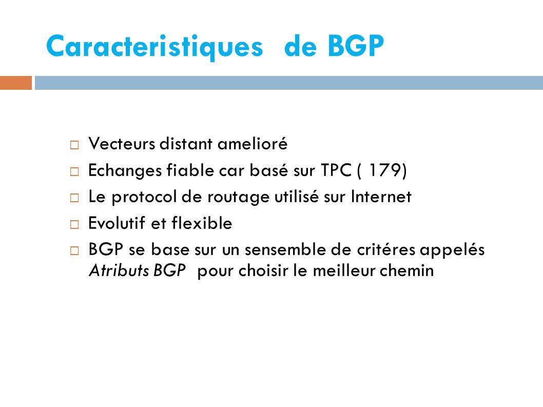 Caracteristiques de BGP