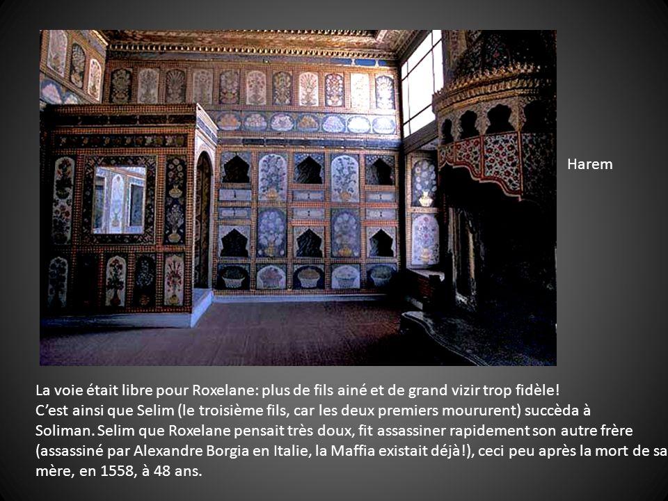 Harem La voie était libre pour Roxelane: plus de fils ainé et de grand vizir trop fidèle!