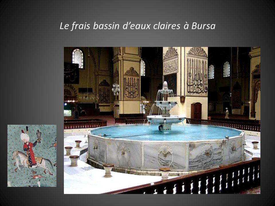 Le frais bassin d'eaux claires à Bursa