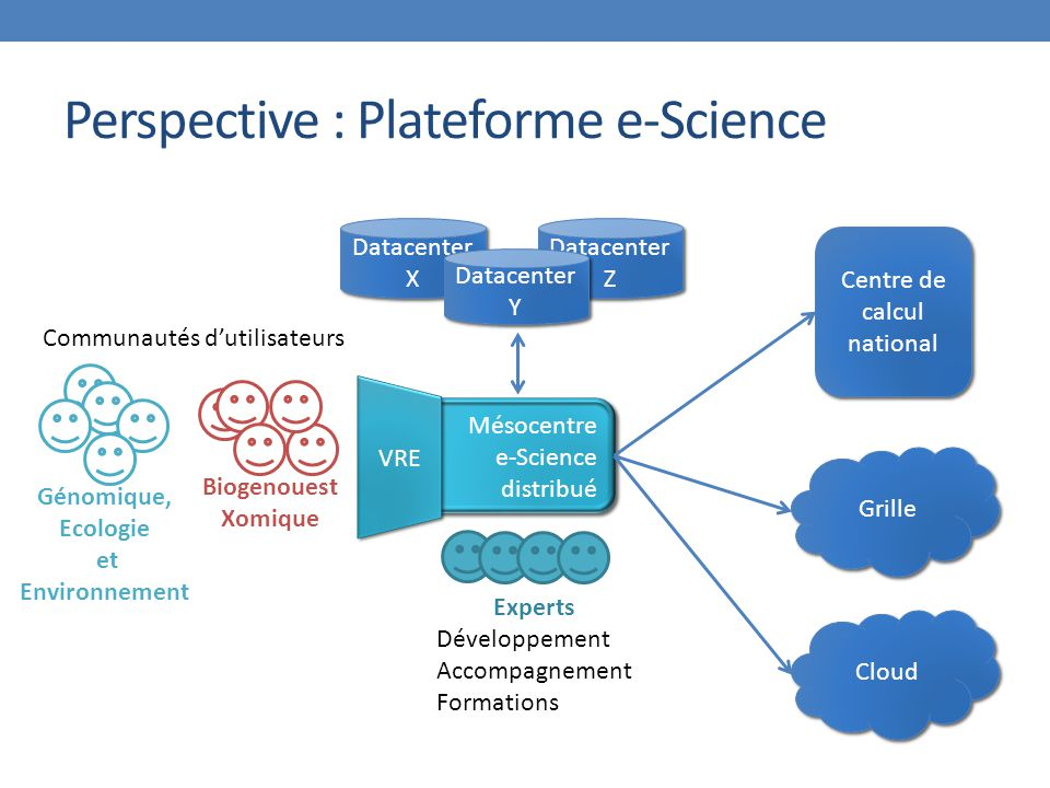 Perspective : Plateforme e-Science