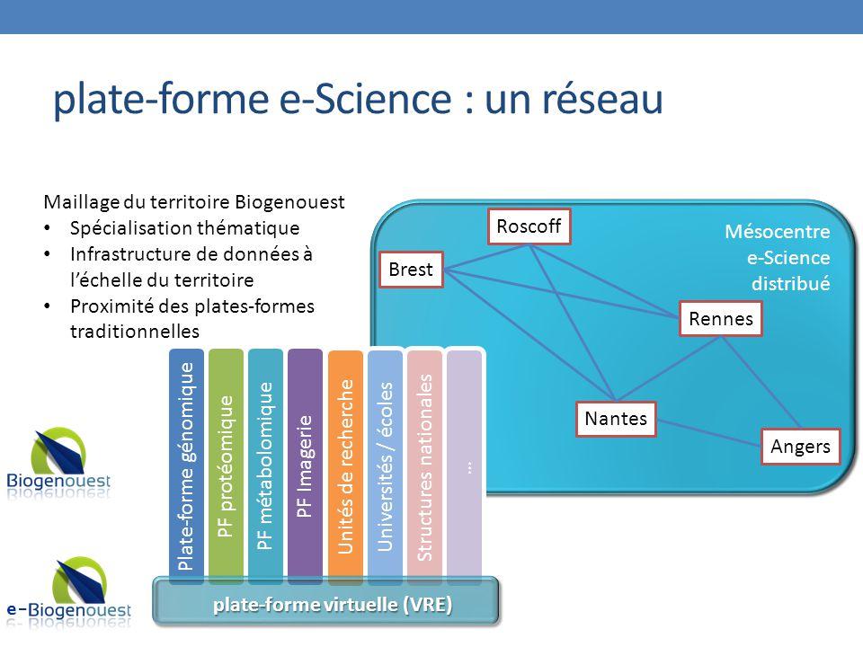 plate-forme e-Science : un réseau