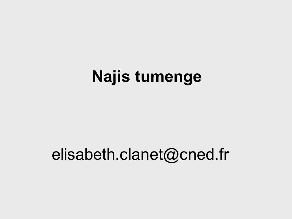 Najis tumenge elisabeth.clanet@cned.fr »