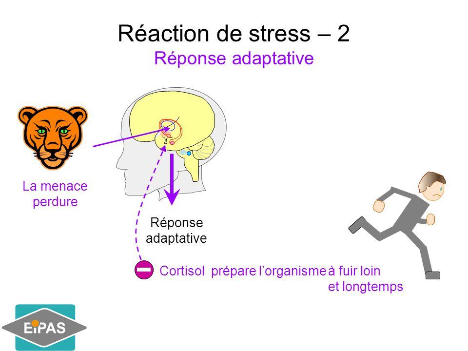 Réaction de stress – 2 Réponse adaptative