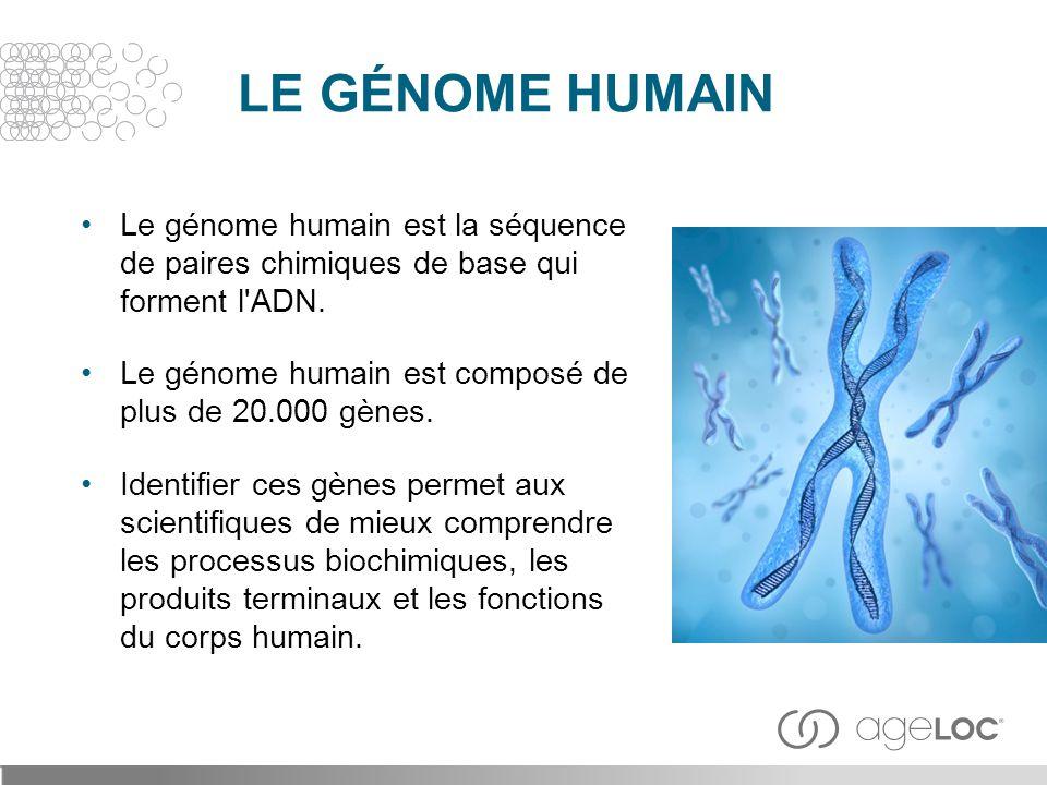 LE GÉNOME HUMAIN Le génome humain est la séquence de paires chimiques de base qui forment l ADN.