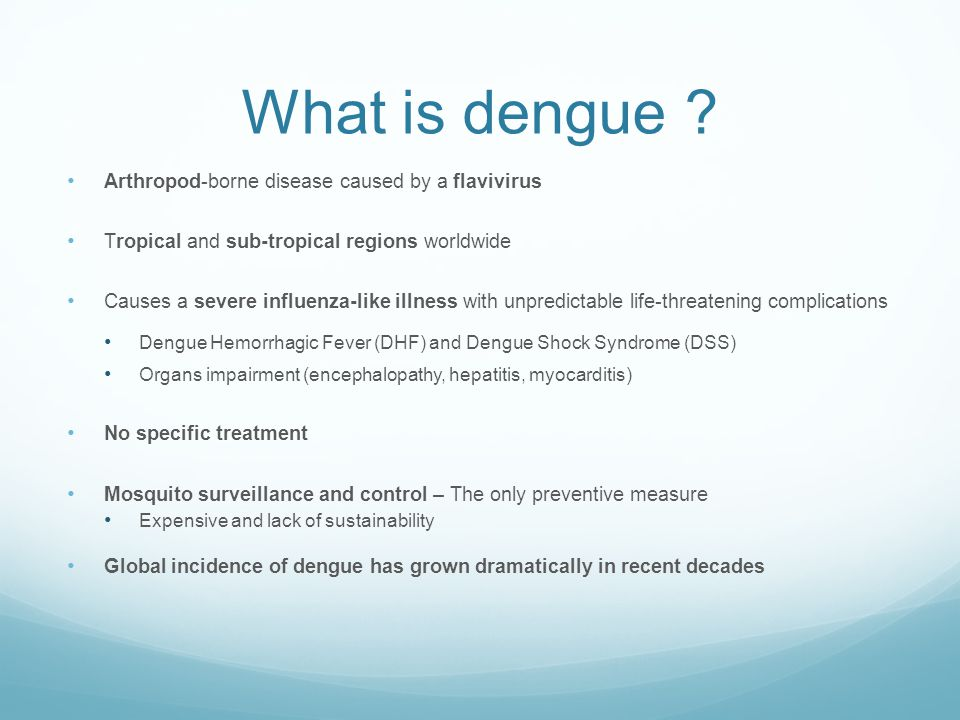 What is dengue Arthropod-borne disease caused by a flavivirus