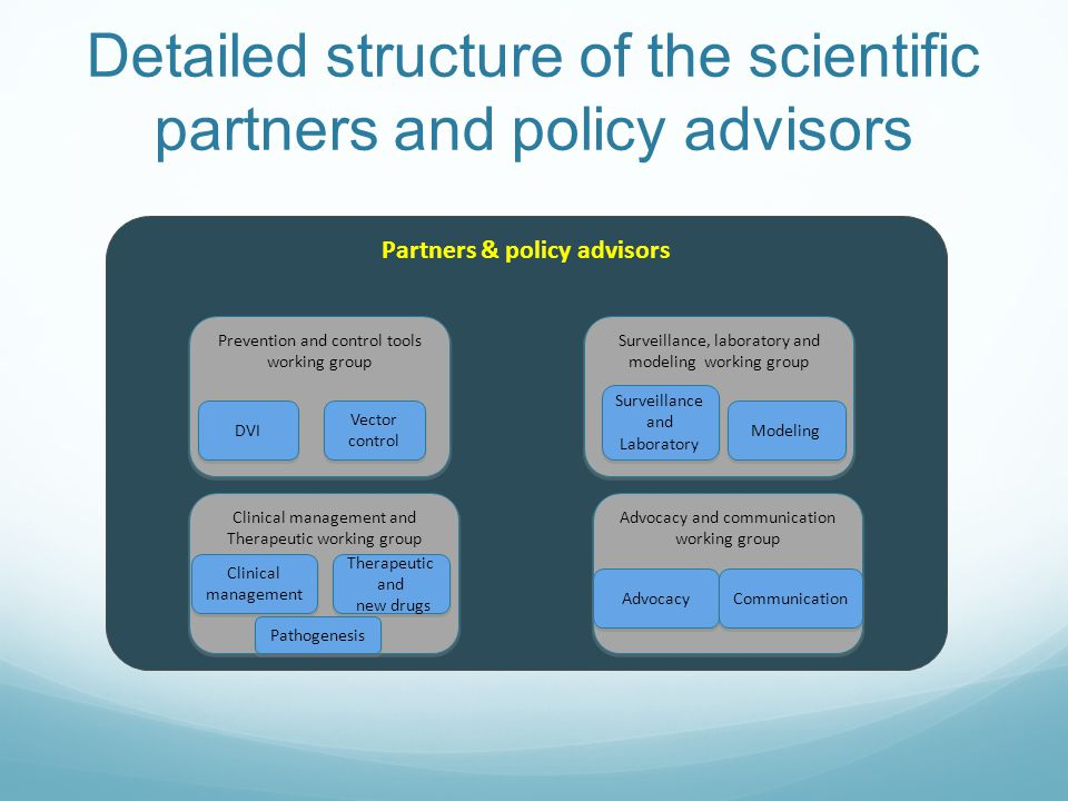 Detailed structure of the scientific partners and policy advisors