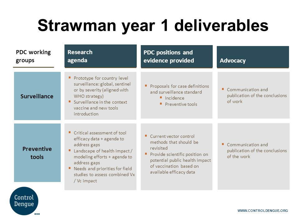 Strawman year 1 deliverables