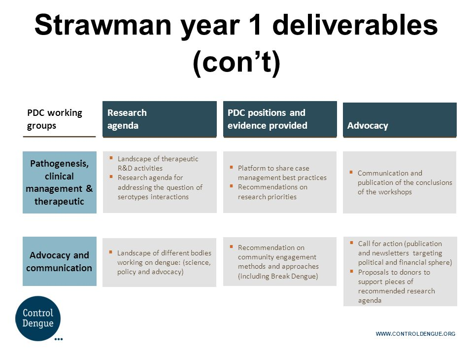 Strawman year 1 deliverables (con't)