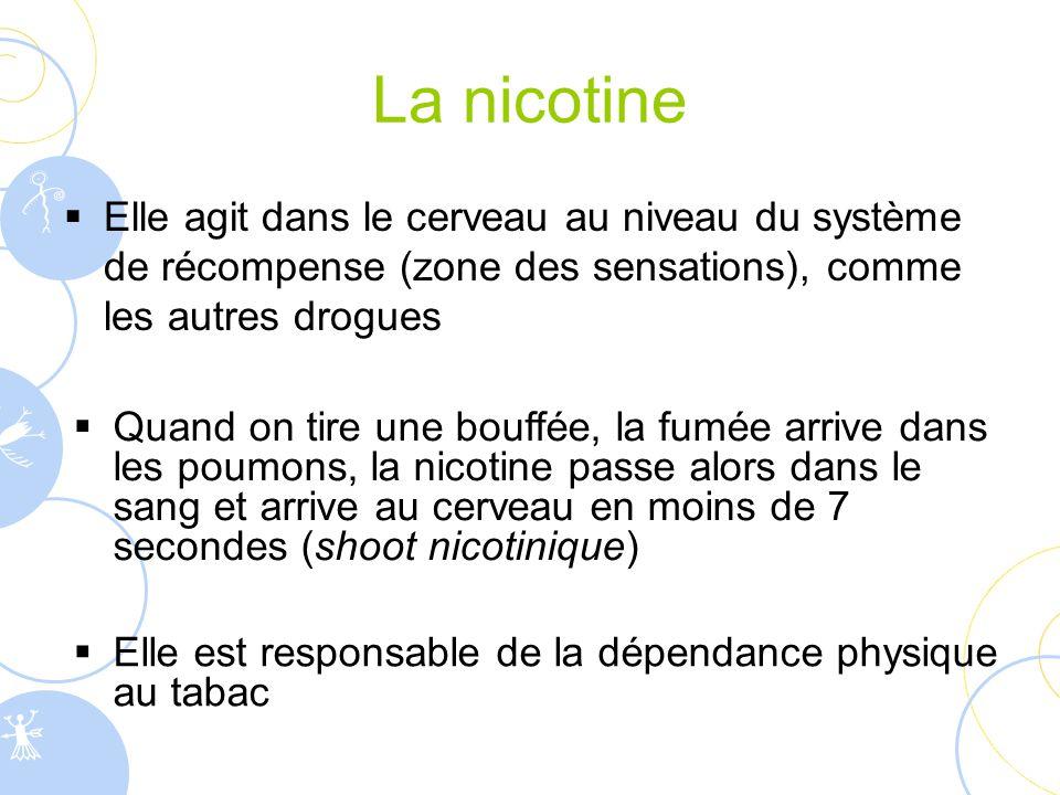 La nicotine Elle agit dans le cerveau au niveau du système de récompense (zone des sensations), comme les autres drogues.