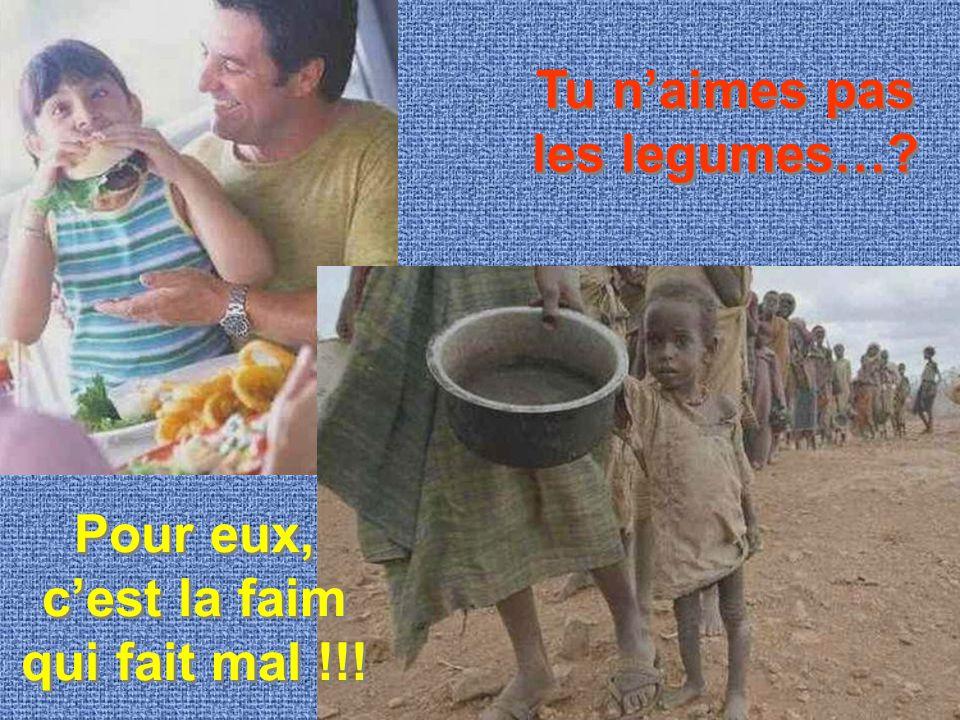 Tu n'aimes pas les legumes… Pour eux, c'est la faim qui fait mal !!!