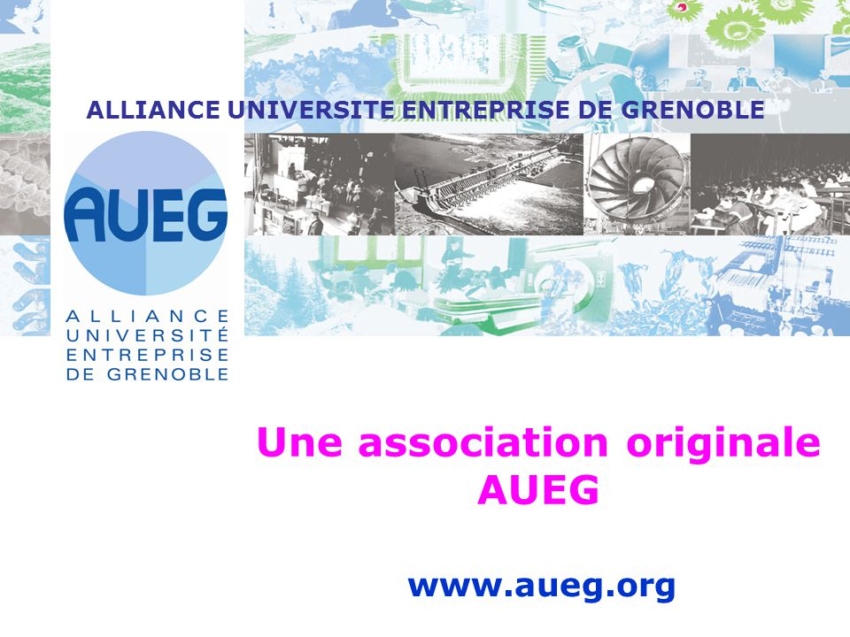 ALLIANCE UNIVERSITE ENTREPRISE DE GRENOBLE Une association originale