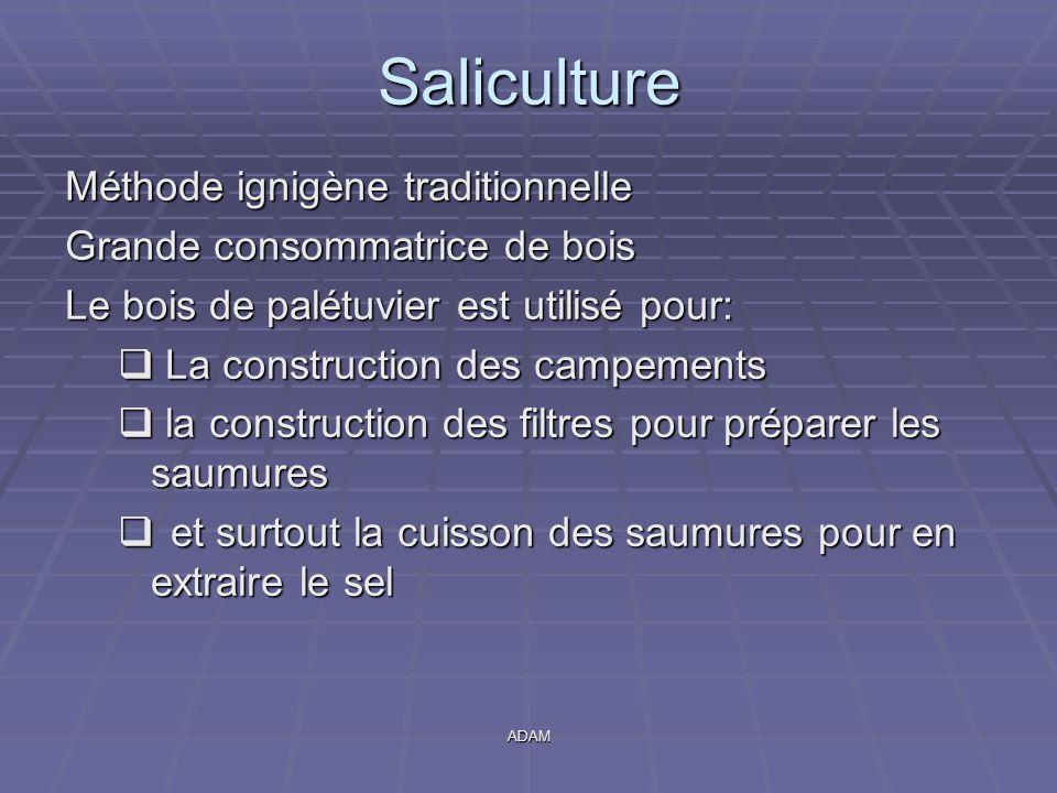 Saliculture Méthode ignigène traditionnelle