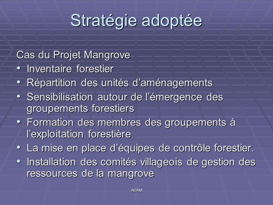 Stratégie adoptée Cas du Projet Mangrove Inventaire forestier