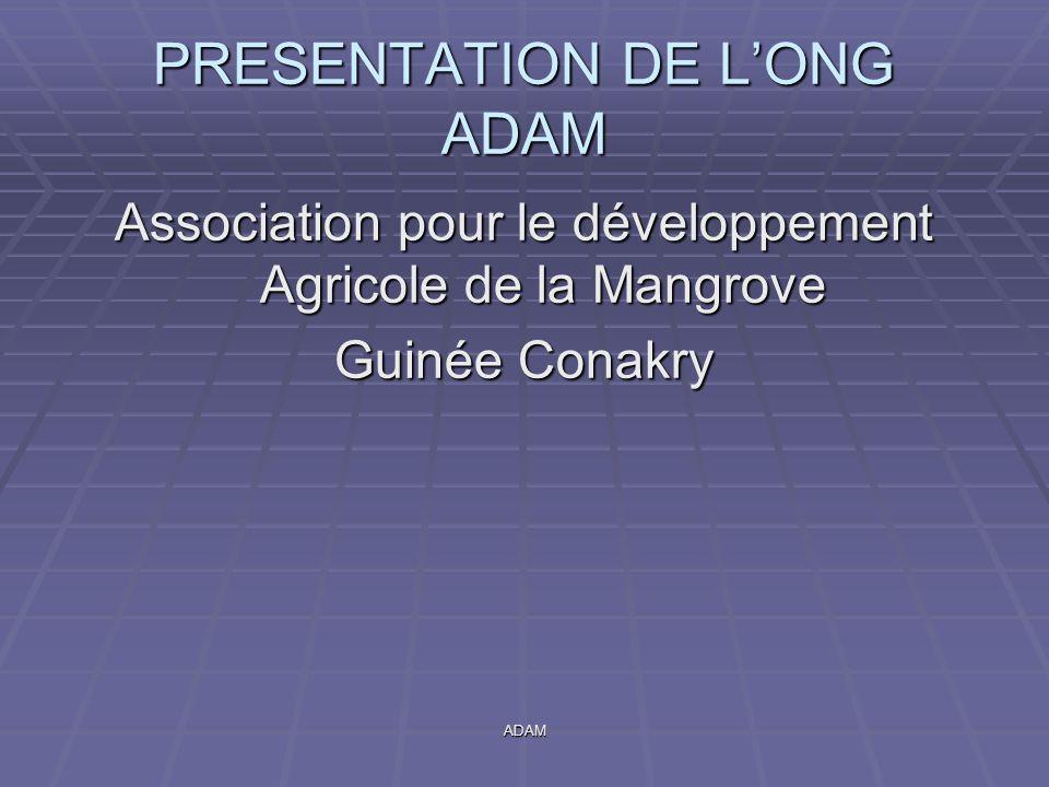 PRESENTATION DE L'ONG ADAM