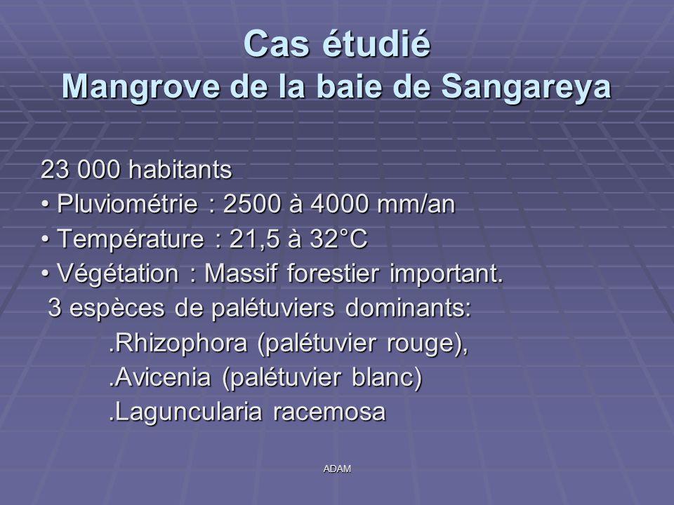 Cas étudié Mangrove de la baie de Sangareya
