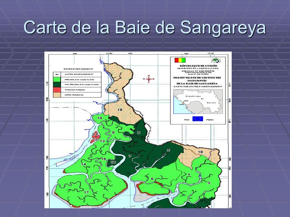 Carte de la Baie de Sangareya