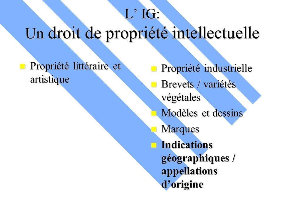 L' IG: Un droit de propriété intellectuelle