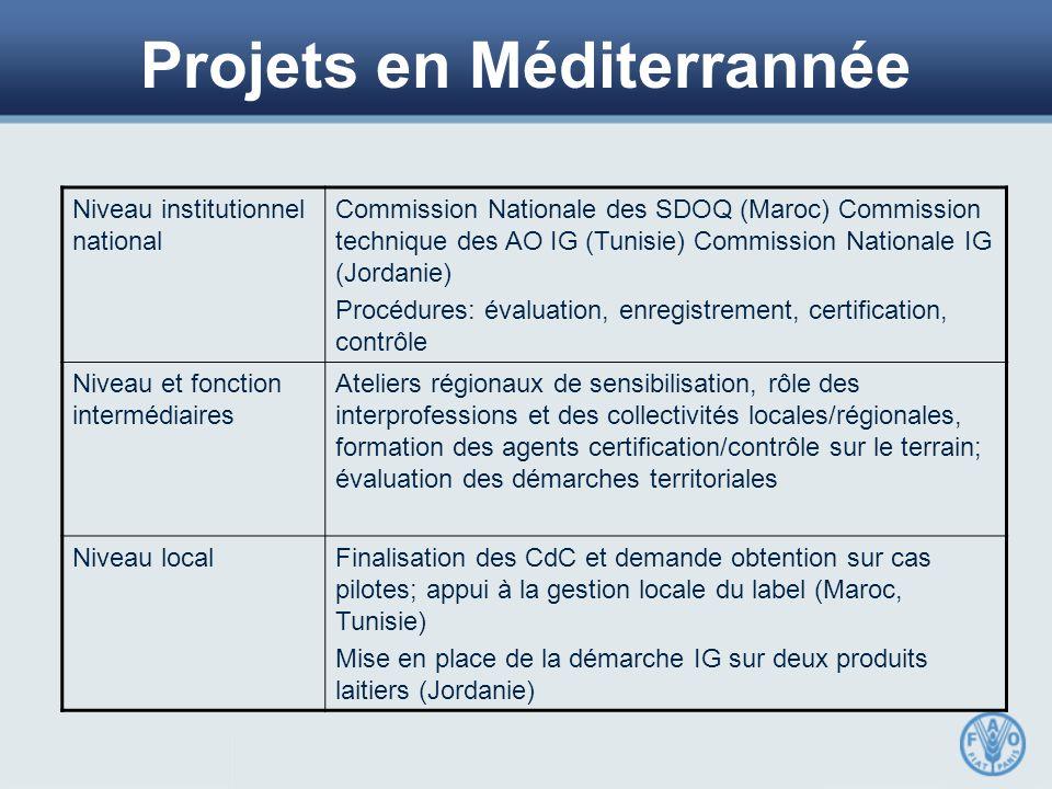 Projets en Méditerrannée